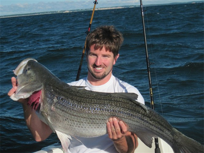 North west florida striped bass