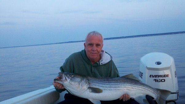 Cape cod fishing reports page 28 for Cape cod fishing report