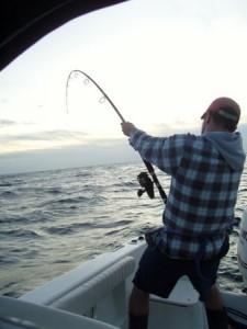 stellwagen bank tuna fishing