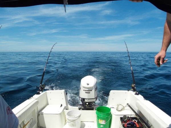 Trolling Soft Plastics for Stellwagen Bank Tuna - My Fishing Cape Cod