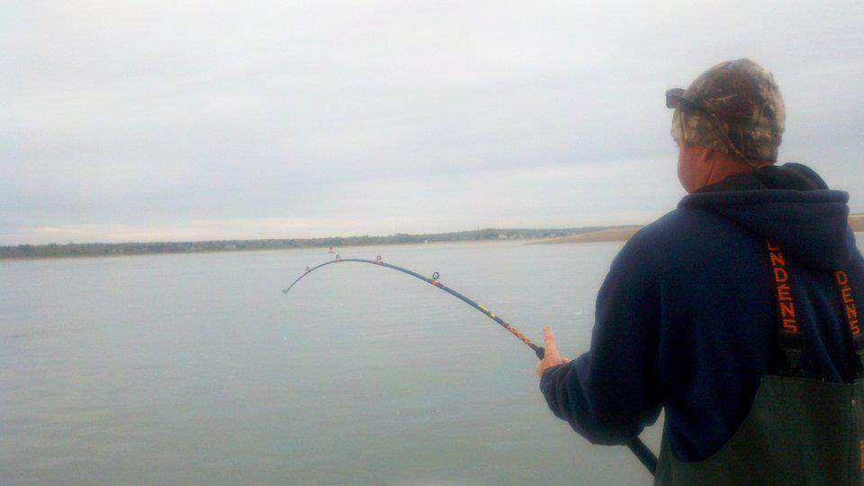 Cape Cod Fishing Report