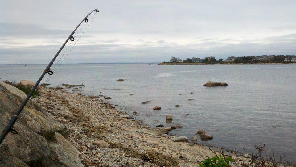 Cape cod fish report for may 3 for Cape may fishing report