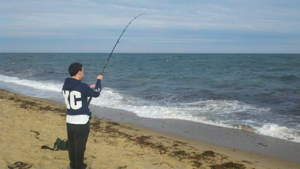 Cape cod bluefish fishing report june 12 for Canal bait and tackle fishing report