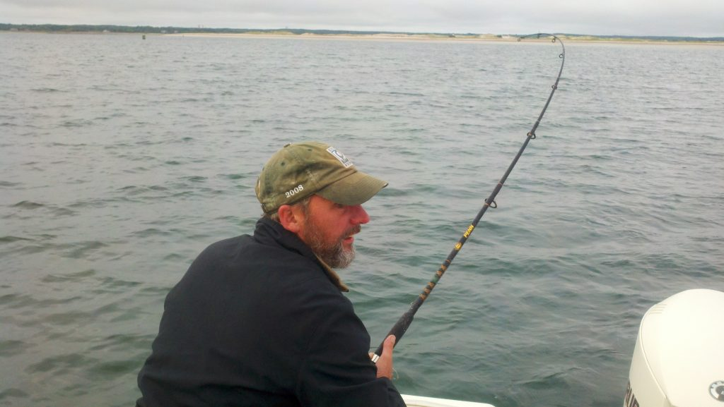 fishing cape cod