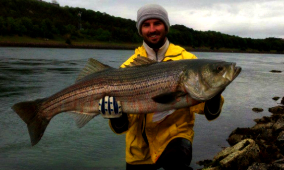 cape cod canal fishing 45.7 pound bass