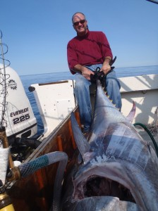 fall tuna fishing cape cod