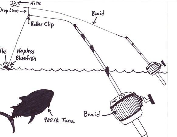 5 ways to fish live bait on cape cod for Kite fishing for tuna