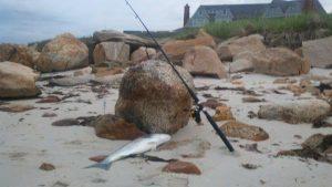 cape cod fishing spots