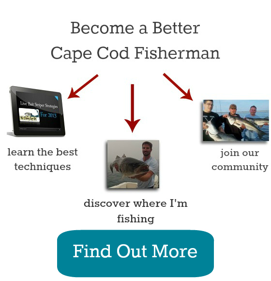 cape cod massachusetts fishing spots