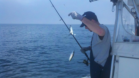 7 secrets to catching more fish this spring on cape cod for Cape cod deep sea fishing