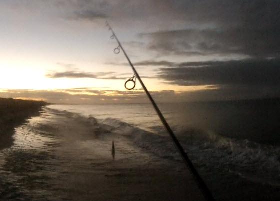 fishing at night cape cod