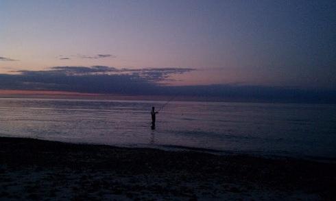 cape cod night surfcasting