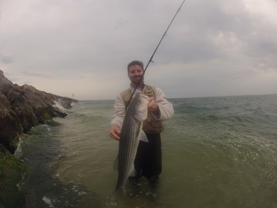 Nantucket sound fishing report bucktailing stripers for Fishing cape cod