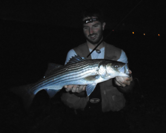 Cape cod fishing blog for Cape cod fishing report