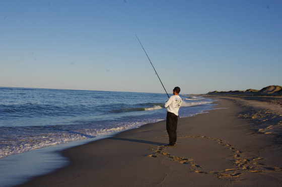 Lower cape cod fishing report for Cape cod fishing