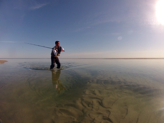 fishing brewster ma