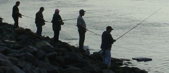 cape cod canal striper fishing tips