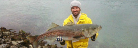 5 five minute or less canal fishing tips that yield big for Canal bait and tackle fishing report