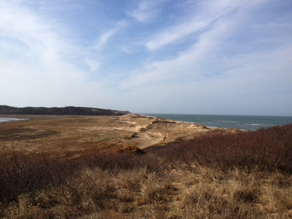cape cod fishing dunes