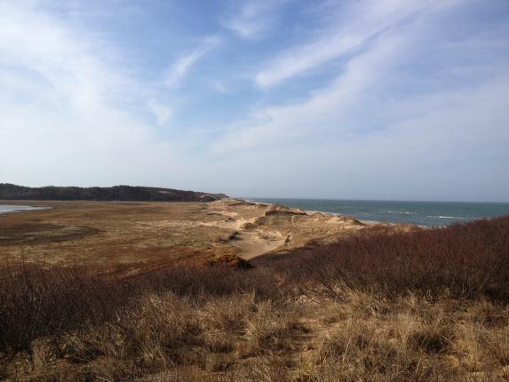 cape cod fishing dunes