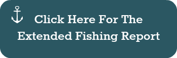 extended fishing report button