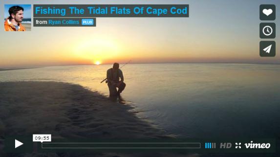 fishing the tidal flats of cape cod image
