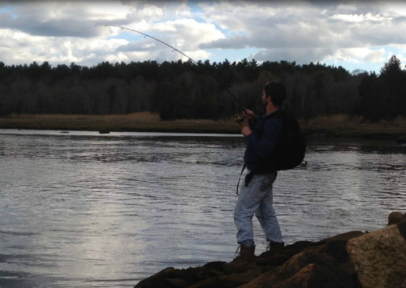 striped bass fishing report cape cod