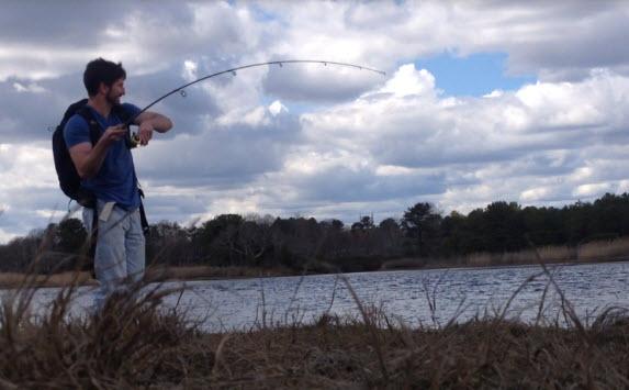 cape cod fishing report micro schoolies