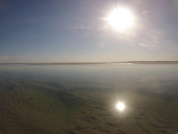 cape cod tidal pool