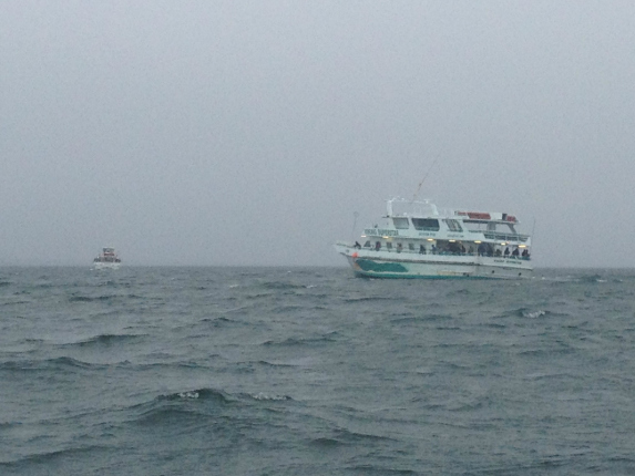 Scup tog the complete update on the bite in buzzard 39 s bay for Cape cod fishing party boats