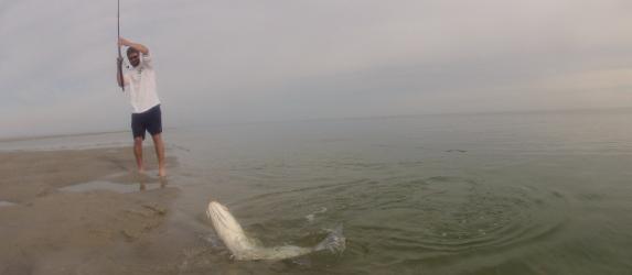 cape cod flats fishing