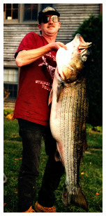 bill baranowski 60 pound cape cod canal striped bass