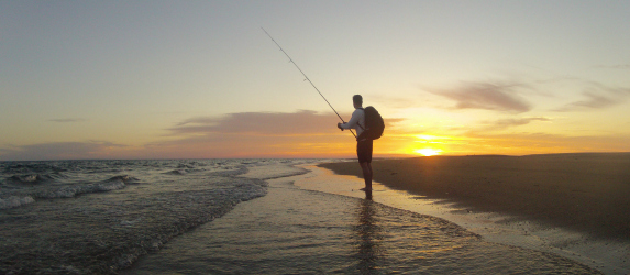 surfcasting cape cod at night