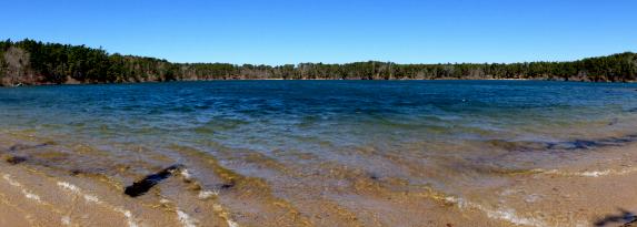 Flax Pond, Brewster - April 2013