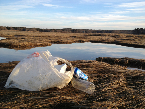 cape cod estuary trash