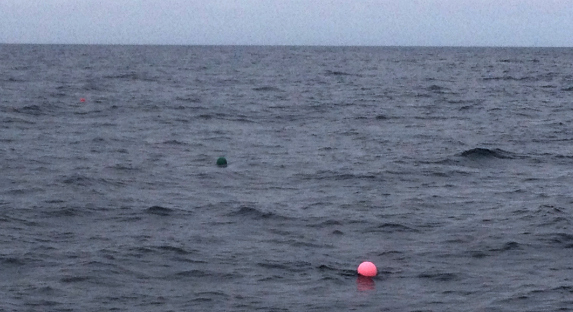 tuna fishing with balloons
