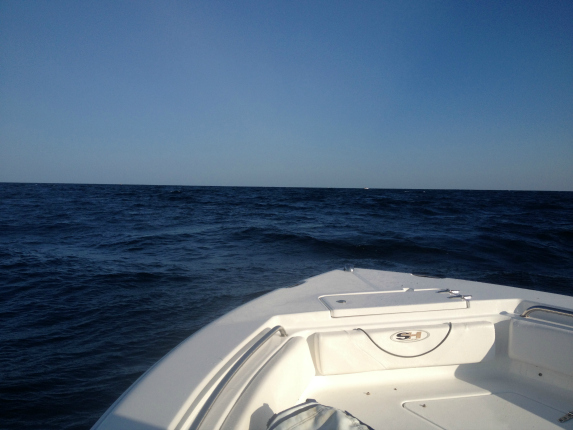 The seas began to lay down as we approached the tuna grounds-which was appreciated!