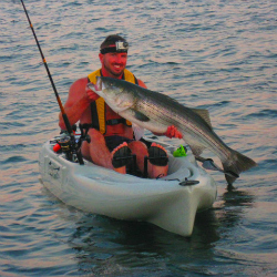 buzzards bay fishing reports