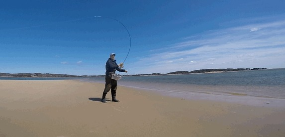 fly casting featured