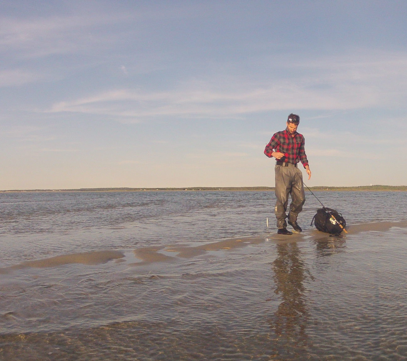 Cape Cod Fishing Reports