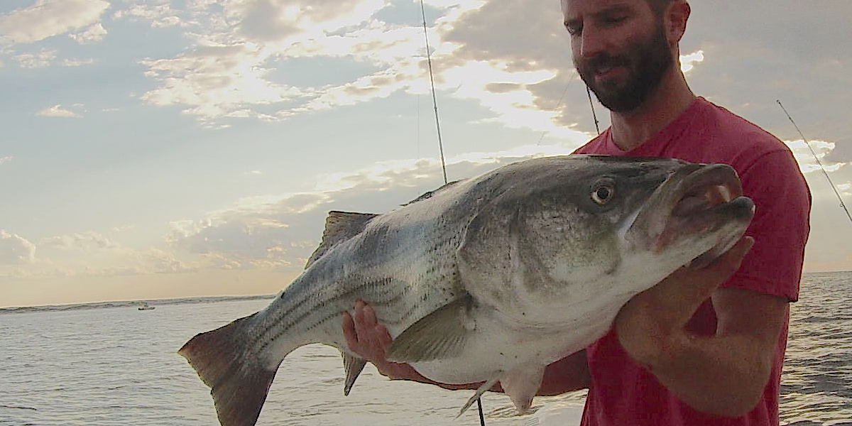 Dcim100gopro for Striper fishing cape cod
