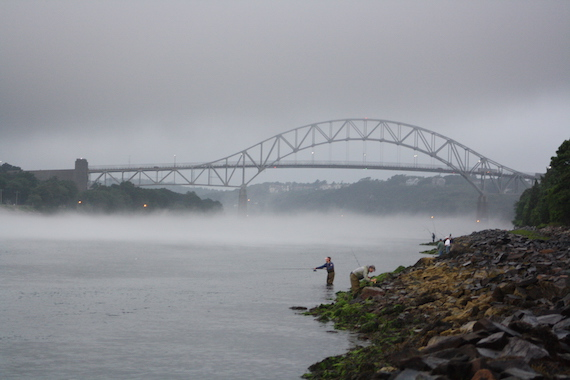 sagamore bridge canal fog