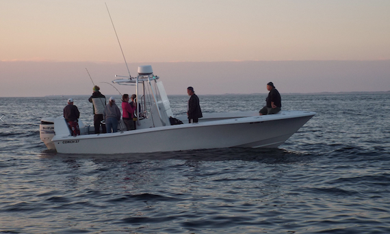 Cape cod fishing charters for Cape cod fishing charters
