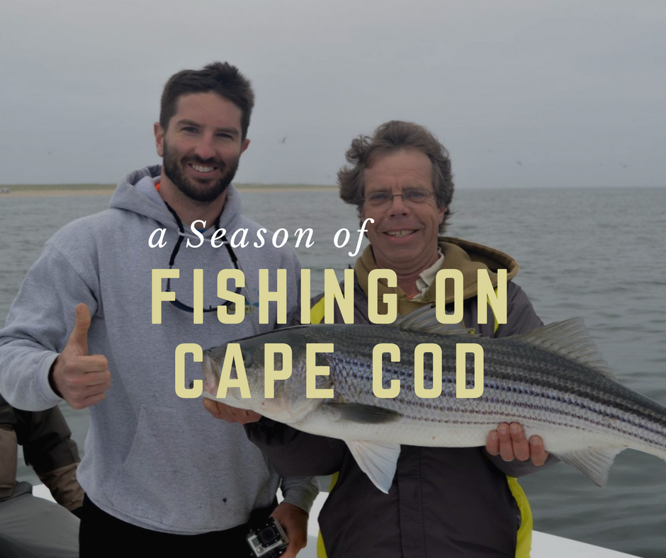 A Season Of Fishing On Cape Cod