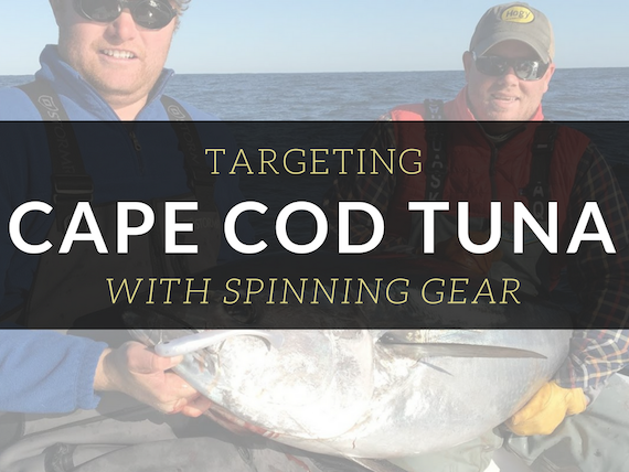 fishing cape cod canal ecourse