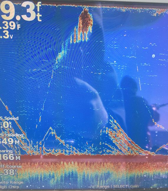 Cape Cod Haddock Fishing Report
