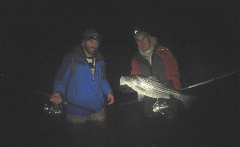 cape cod holdover striped bass april 8 jason mazzola ryan collins