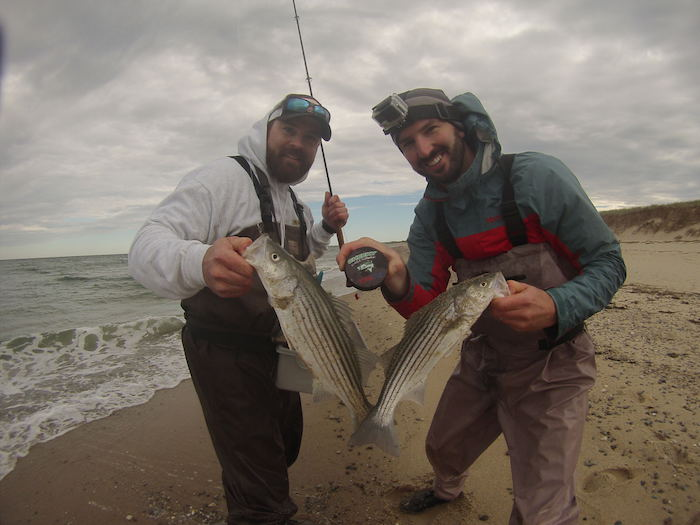 Fly fishing the cheeky schoolie tournament for Cheeky fly fishing