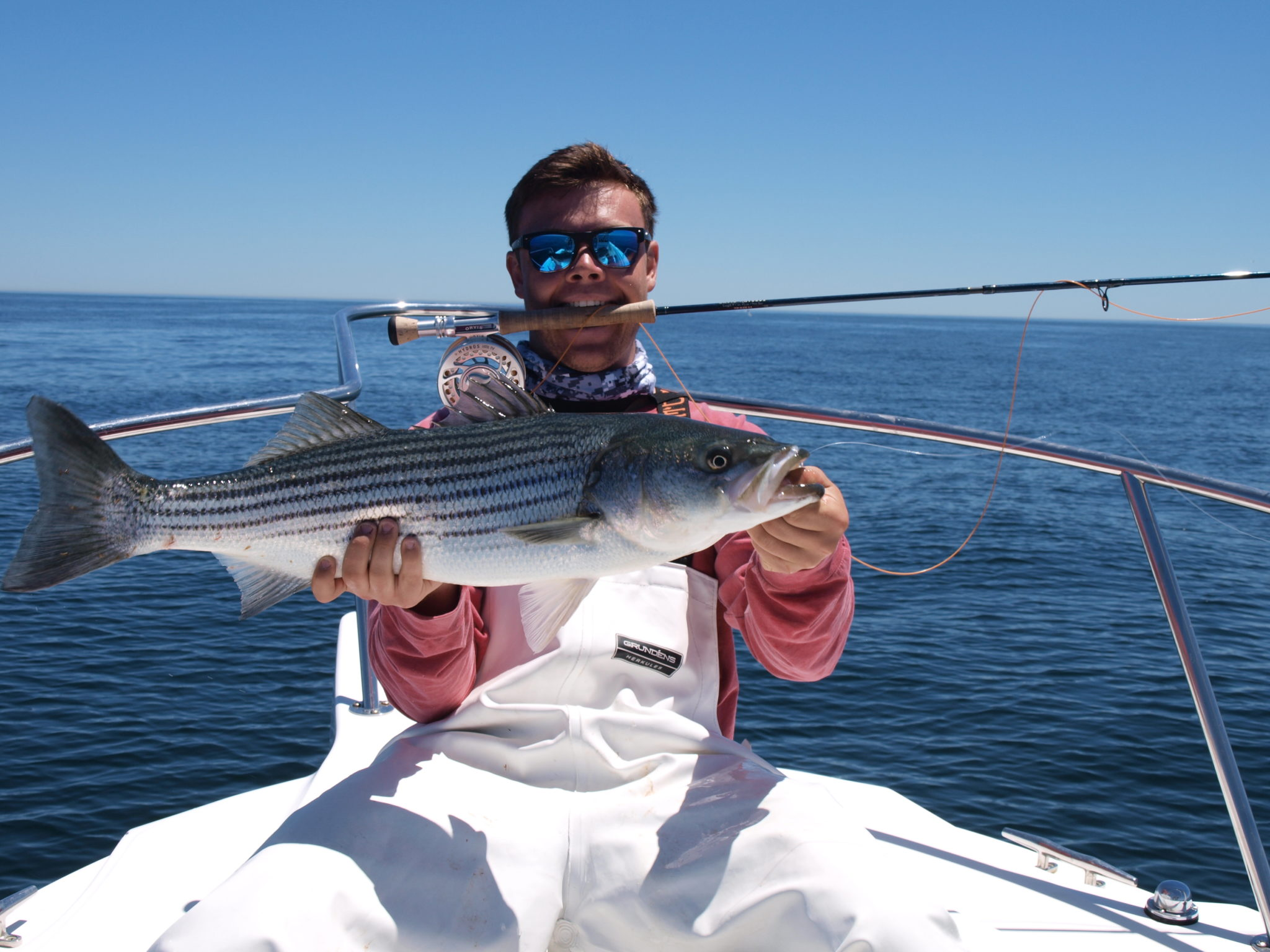 Prime time for fly fishing live lining for Fishing cape cod