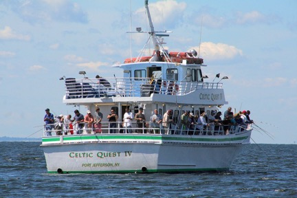 Bluefish can taste delicious for Cape cod fishing party boats